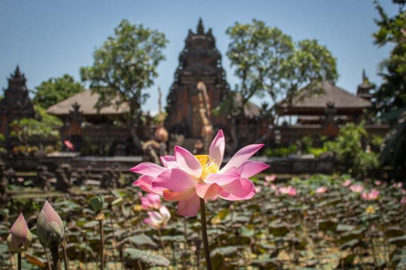Bali 2015 - Blog-034